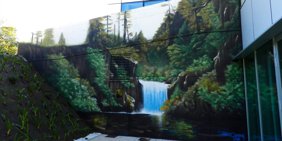 Graffiti profesional de cascada